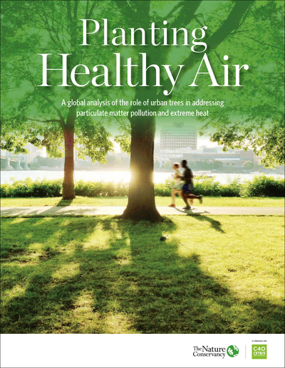 Planting Healthy Air Report