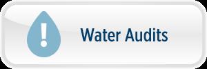 WaterAudits