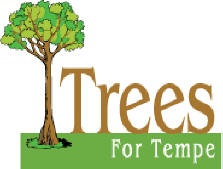 trees for tempe