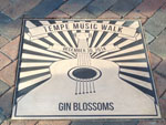 gin blossoms plaque web