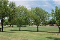 Waggoner park