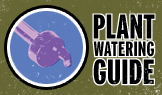 plant-watering-guide-button