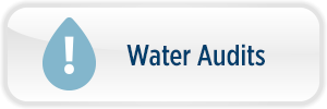 WaterAudits