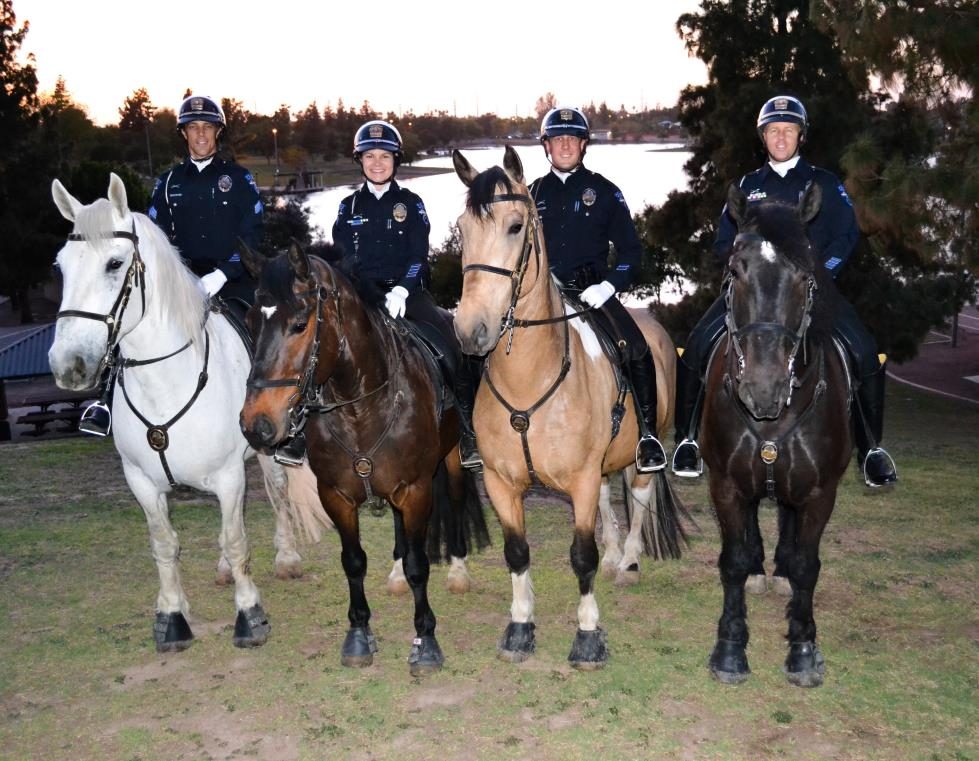 4 uniformed officers on police horses