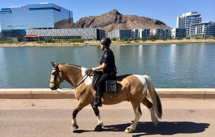 Mounted Horse Rex and Officer with Tempe Town Lake in the background