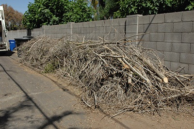Green Waste Pile
